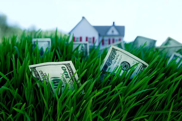 Peníze v trávě