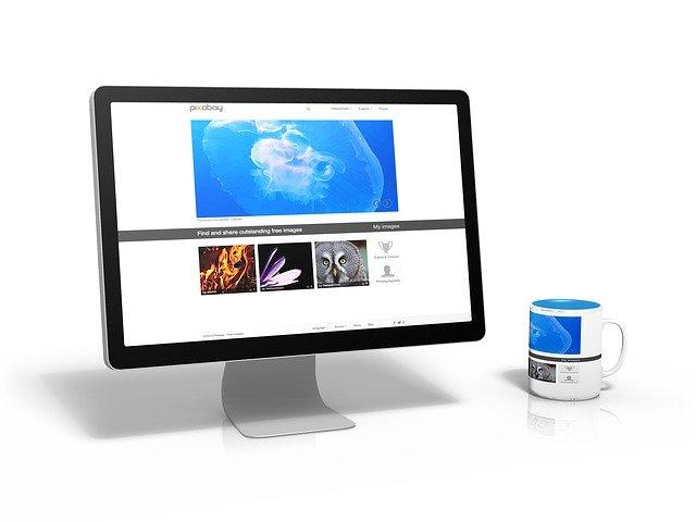 podnikatelský web